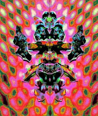 Collage 2 v8