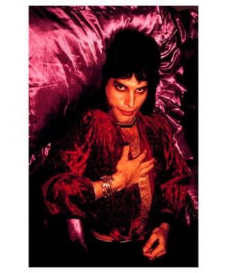 Purple Freddie